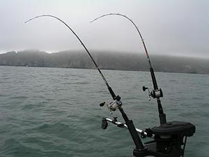 Необычная и занимательная троллинг-рыбалка
