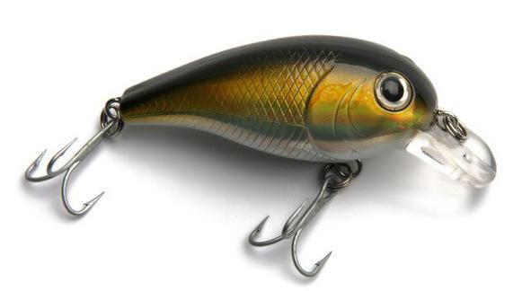 Какие бывают рыболовные приманки?