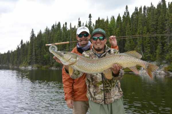 Ароматизаторы для рыбалки: обзор и отзывы. Активатор клёва
