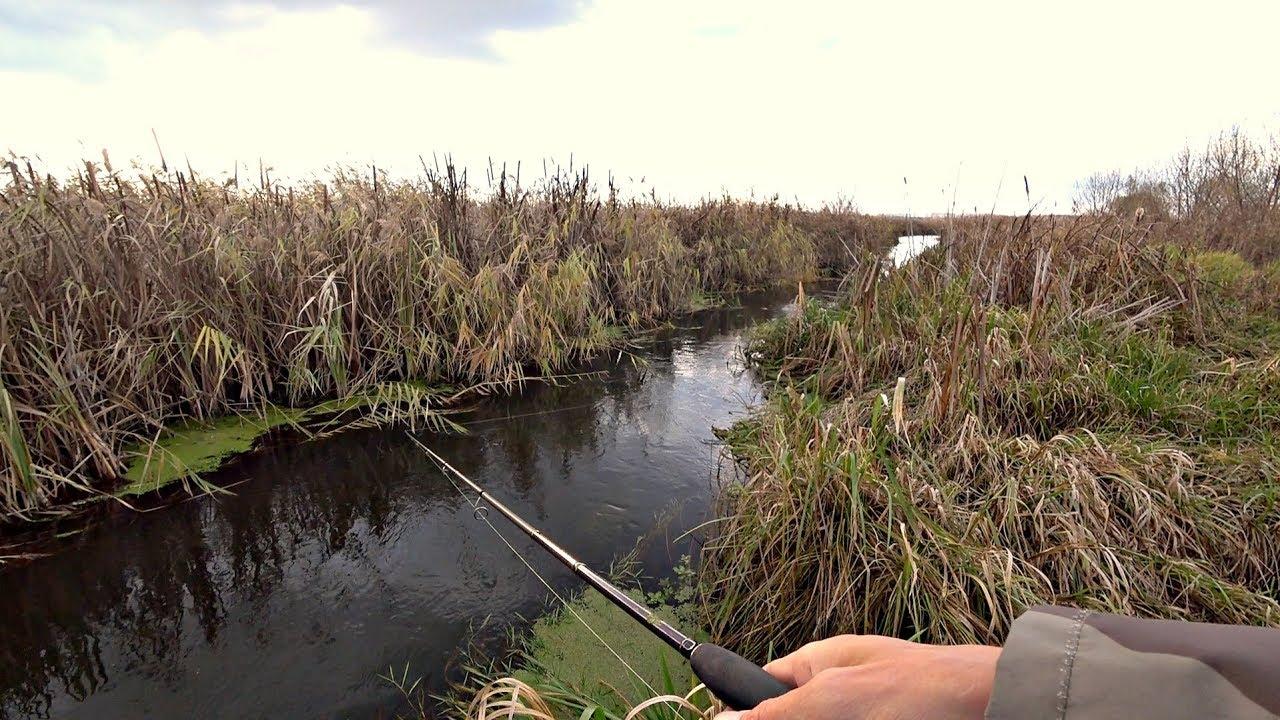 Не ожидал поймать таких в РУЧЬЕ! Рыбалка на спиннинг.