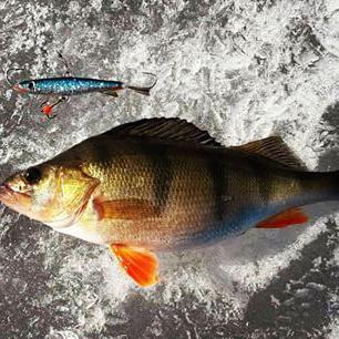 Балансир для зимней рыбалки на окуня: изготовление своими руками. Самодельные балансиры для зимней рыбалки