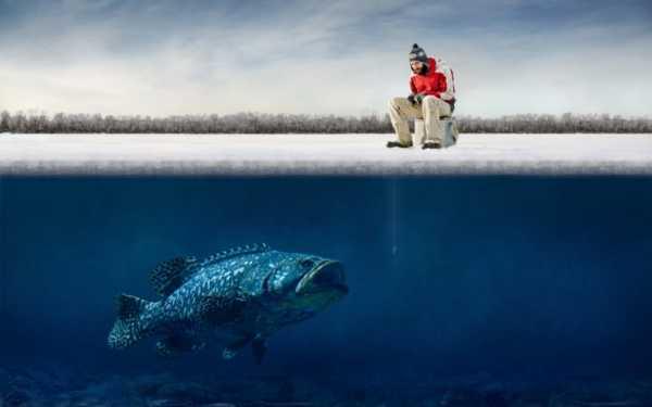 Зимняя рыбалка в Нягани: фото и отзывы