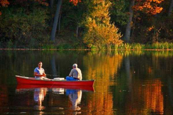 Какая рыба клюет в сентябре? Ловля рыбы в сентябре: что клюет?