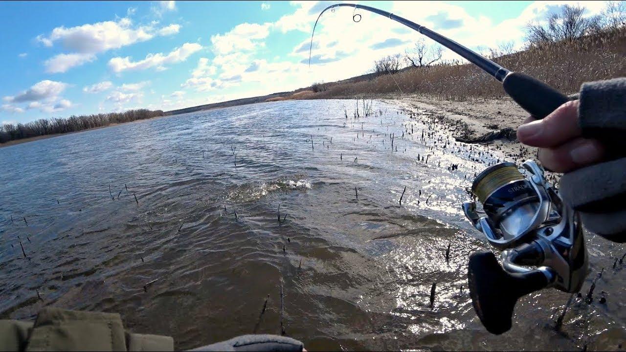 ТАСКАЮ СУДАКА ОДИН ЗА ДРУГИМ на не обычную приманку! Рыбалка на спиннинг.