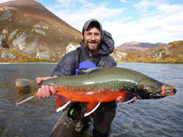 Рыбалка на Аляске: лучшие места для ловли, фото с описанием