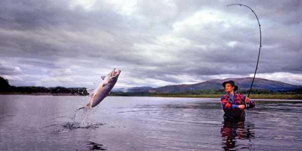 Самые благоприятные дни для рыбалки по месяцам летом