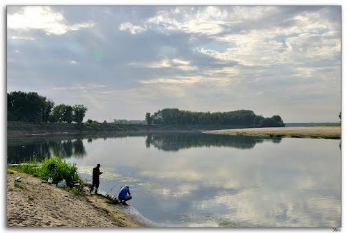 Клев рыбы в Волгоградской области. Рыбалка в Волгограде