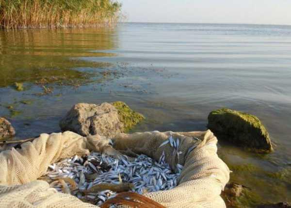 Рыбалка в Мариуполе: куда лучше поехать?