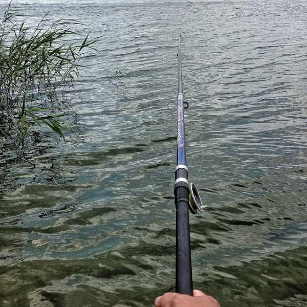 Рыбалка в Сызрани: места и способы ловли