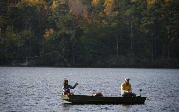Отчеты о рыбалке в Вологодской области: реки и озера