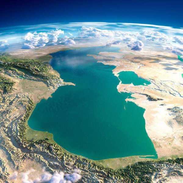 Какая рыба водится в Каспийском море: список, описание, интересные факты