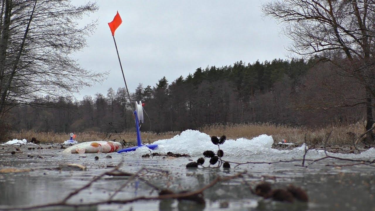 Оставили жерлицы без присмотра, вернулись, а там сработка! Зимняя рыбалка.