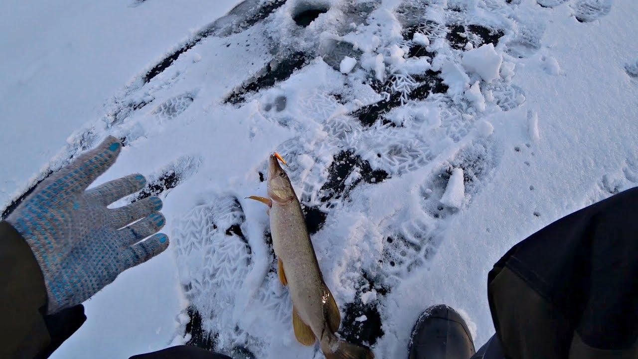 Рыбалка 2020. Только опустил балансир и сразу поклевка! Ловля щуки зимой на реке.