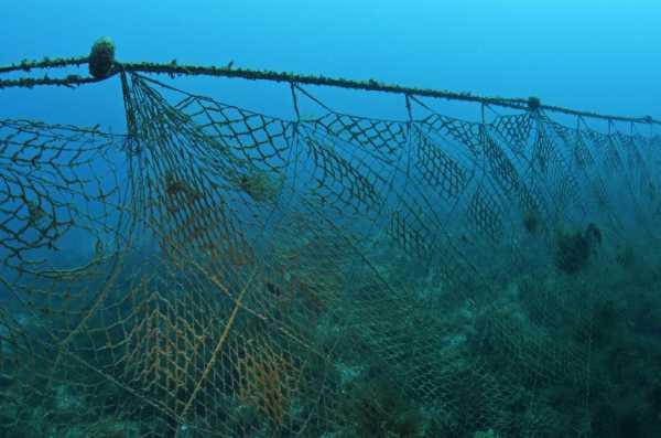 Как ставить сеть: советы опытных рыболовов