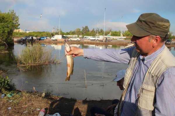 Круглогодичная рыбалка в Астане: где лучше всего ловить рыбу?