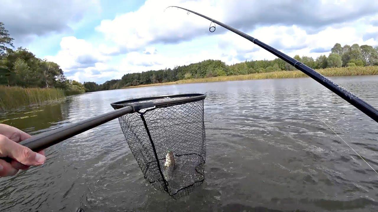 Не зря ждали осень! Наконец то клюет! Рыбалка на щуку на озере.